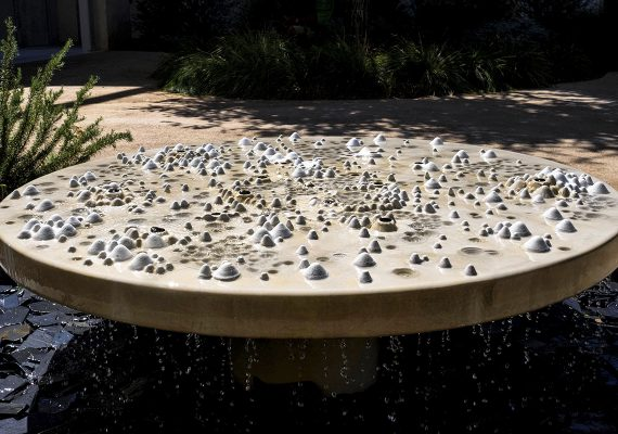 Social network water feature
